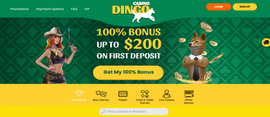 dingo sign up step by step -1