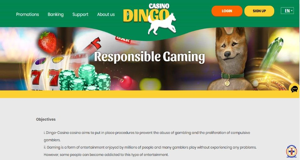Responsible Gaming Policy In New Zealand